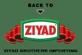 back-to-ziyad